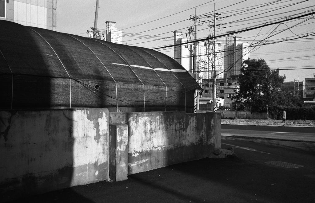 160924-leicam6-35mmsummaron-apx100-31_33-1