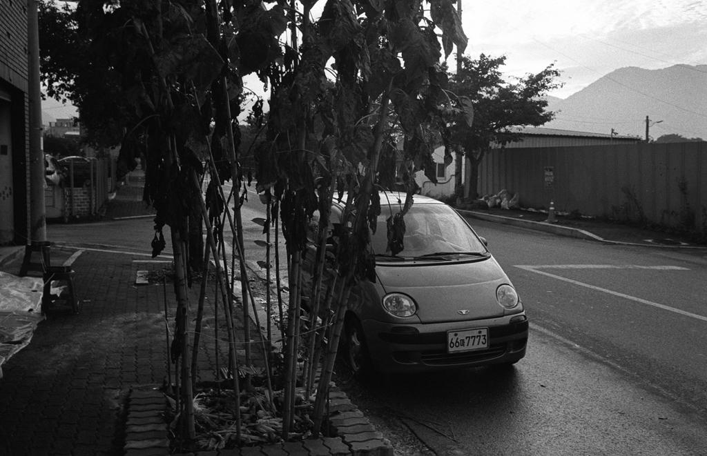 160927-leicam6-35mmsummaron-400tx-37_37-1