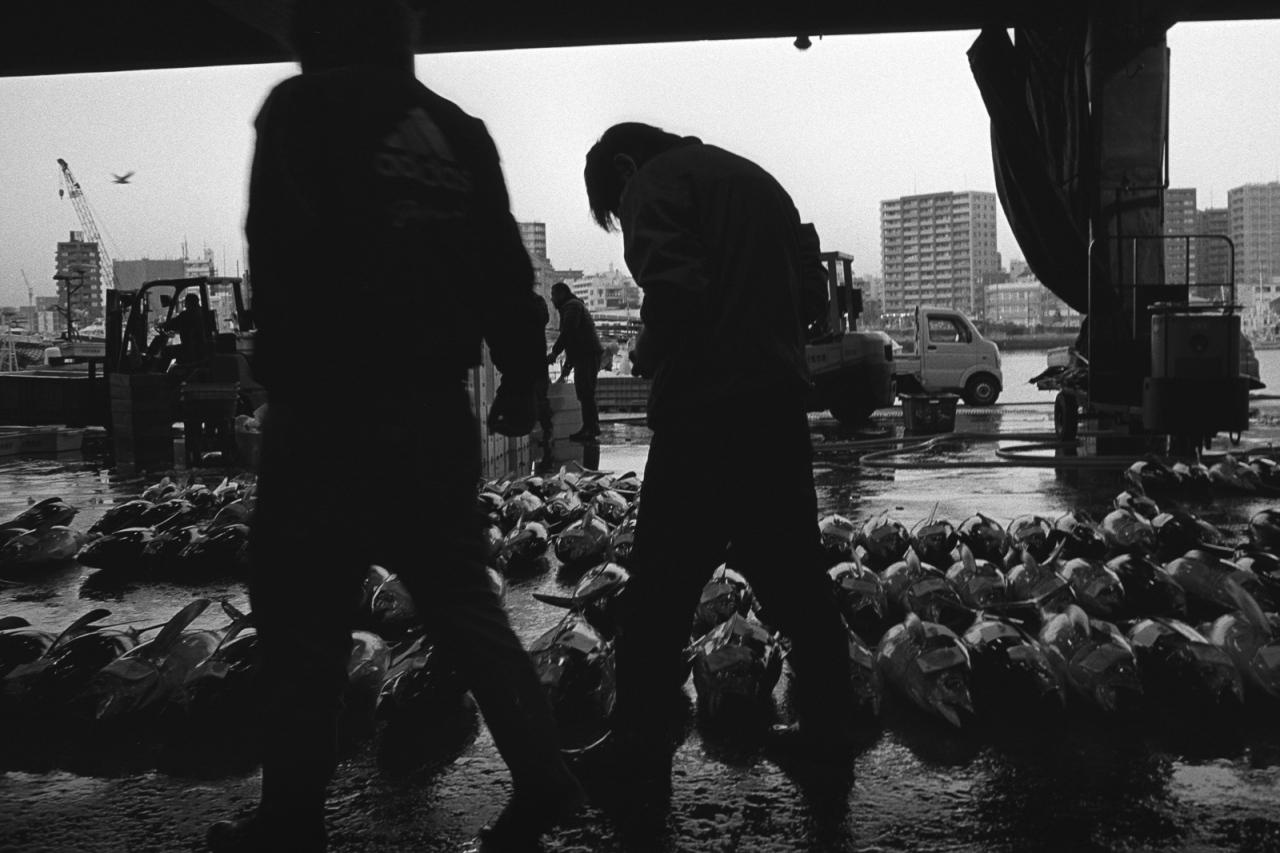 kagoshima-fish-market-20