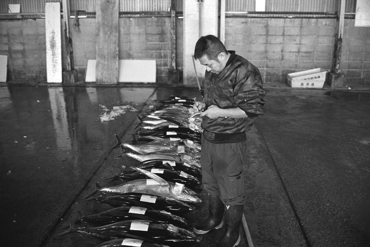 kagoshima-fish-market-24