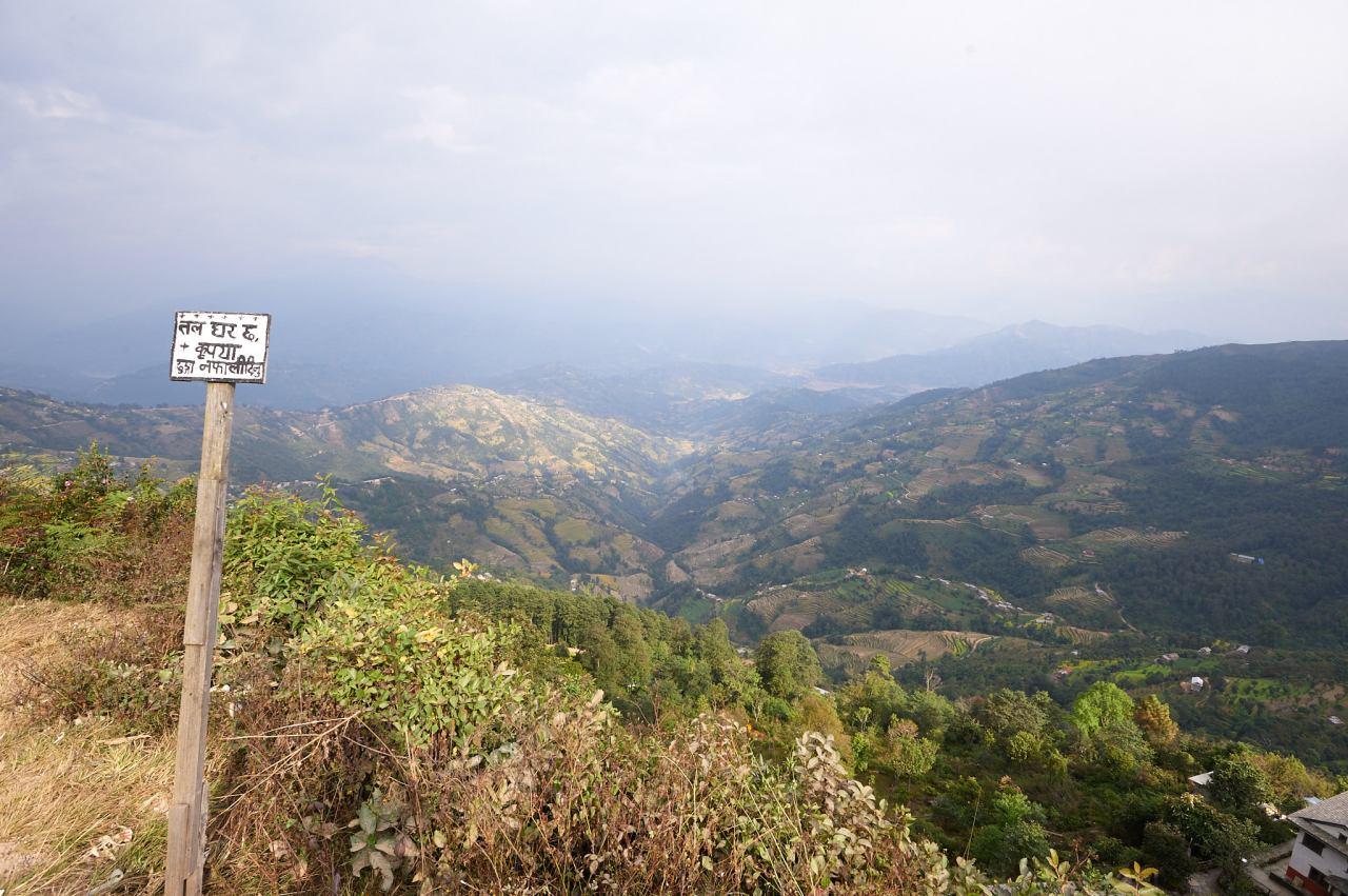 2010-11-12 13.56.21_DSC5095002643